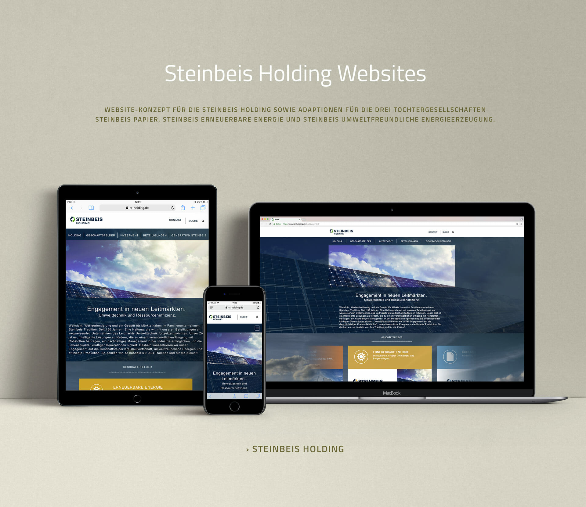 Website Steinbeis Holding resonsive